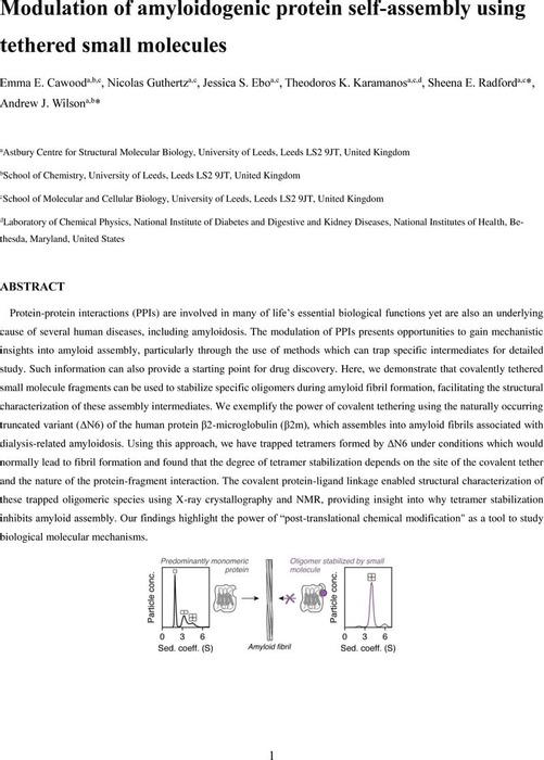 Thumbnail image of MainText_chemxriv.pdf