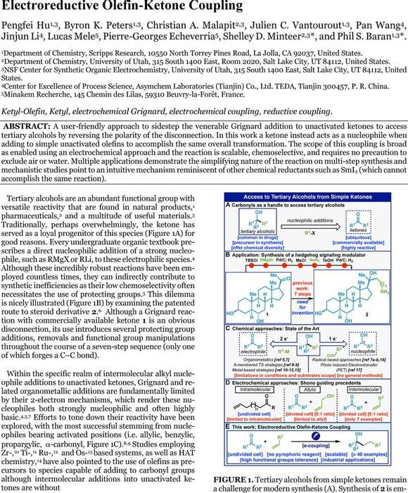 Thumbnail image of TEXT FINAL.pdf