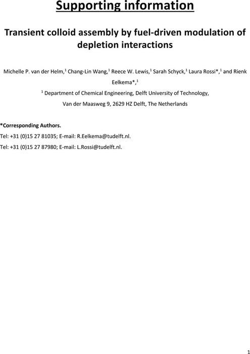 Thumbnail image of Colloids_SI.pdf