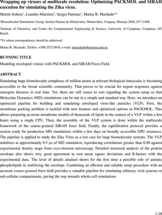 Thumbnail image of SIRAH_Packmol_draft_v19.pdf