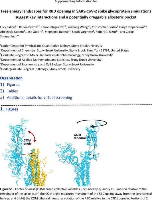 Thumbnail image of SARS-CoV-2_hinge_free_energy_landscapes.SI.pdf