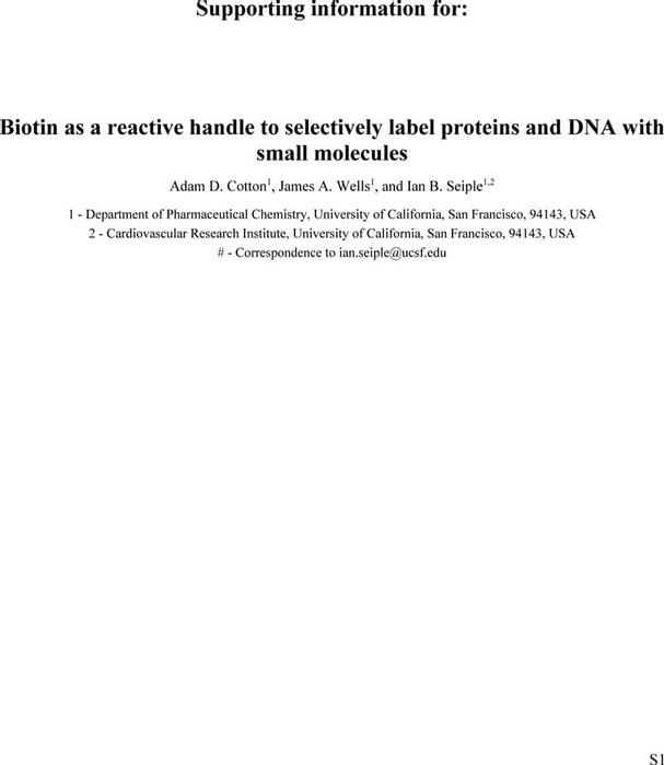 Thumbnail image of SI-final.pdf