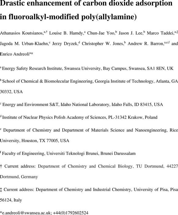 Thumbnail image of AKoutsianos_F-PAA-C60_ChemRxiv_Manuscript.pdf