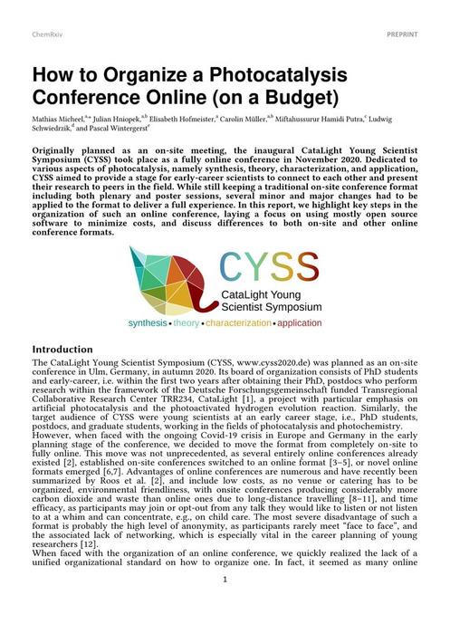 Thumbnail image of cyss_report.pdf
