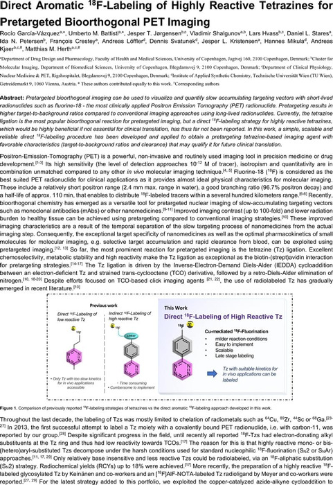 Thumbnail image of Direct Aromatic 18 F-Labeling of Highly Reactive Tetrazines for Pretargeted Bioorthogonal PET Imaging.pdf