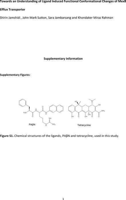 Thumbnail image of Chemrxiv MexB Manuscript_SI Documenet 2021.pdf
