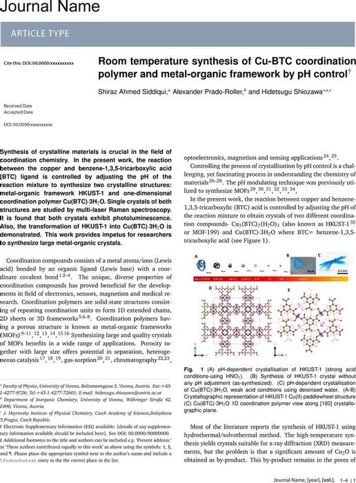 Thumbnail image of Research paper_Siddiqui et al_chemarxiv_uniwien.pdf