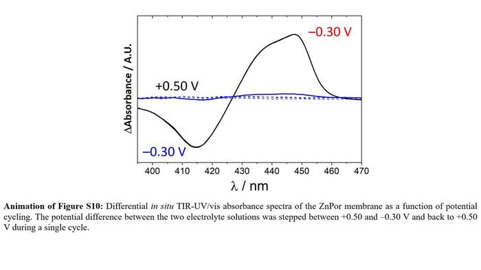 Thumbnail image of AVI animation of Figure S10.avi