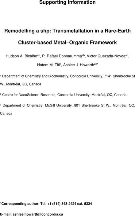 Thumbnail image of SI_Transmet_(fv).pdf