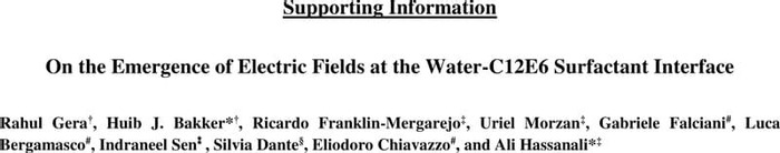 Thumbnail image of Supporting Information_E-Field_2021.pdf