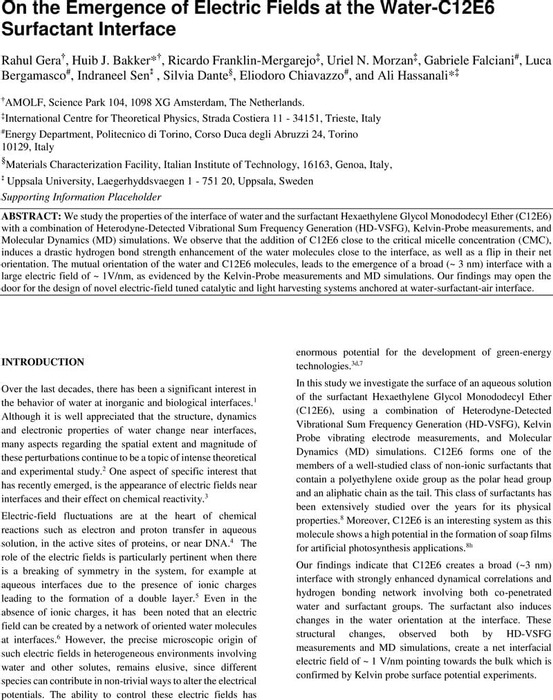 Thumbnail image of Manuscript_E-Field_2021.pdf