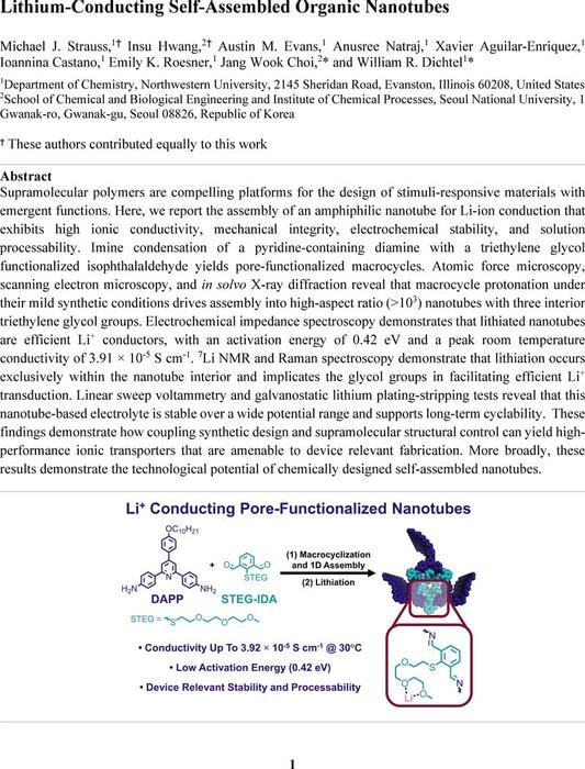 Thumbnail image of Strauss2021_Nanotubes Lithium Conductivity_ChemRxiv.pdf