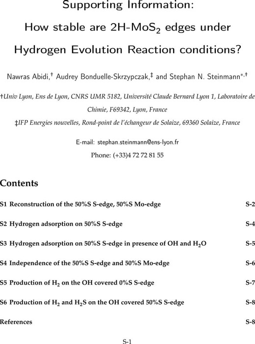 Thumbnail image of SI-MoS2-edges-HER.pdf