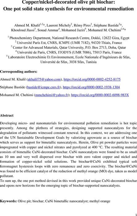 Thumbnail image of CuNi-decorated olive pit  biochar_2021 06 03_v2.pdf