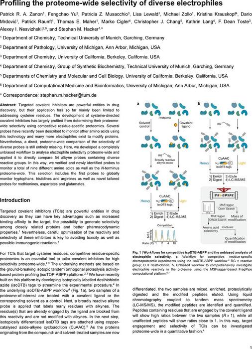 Thumbnail image of manuscript_Zanon_et_al_v2.pdf
