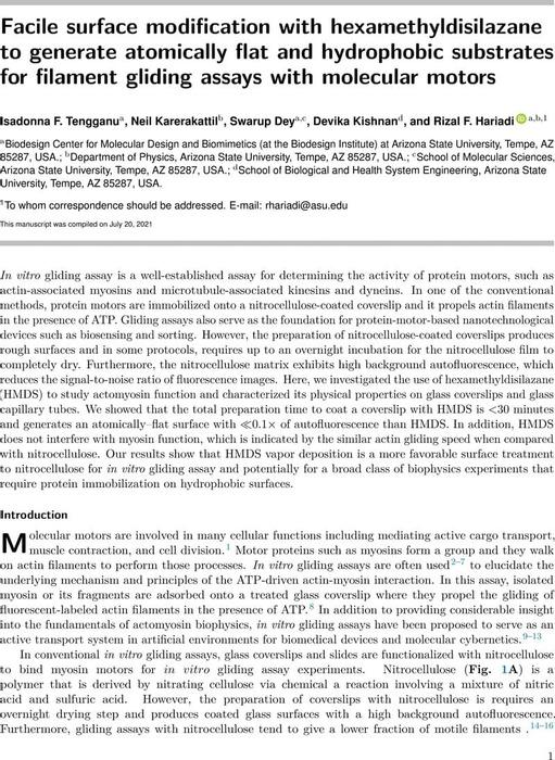 Thumbnail image of HMDS_FinalDraft (7).pdf
