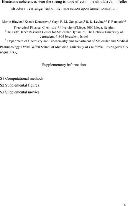 Thumbnail image of MartintunnelingJPCASI_final.pdf