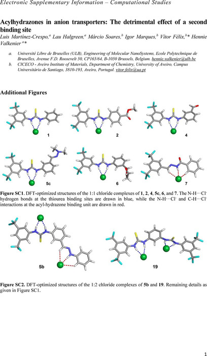 Thumbnail image of comp_ESI.pdf