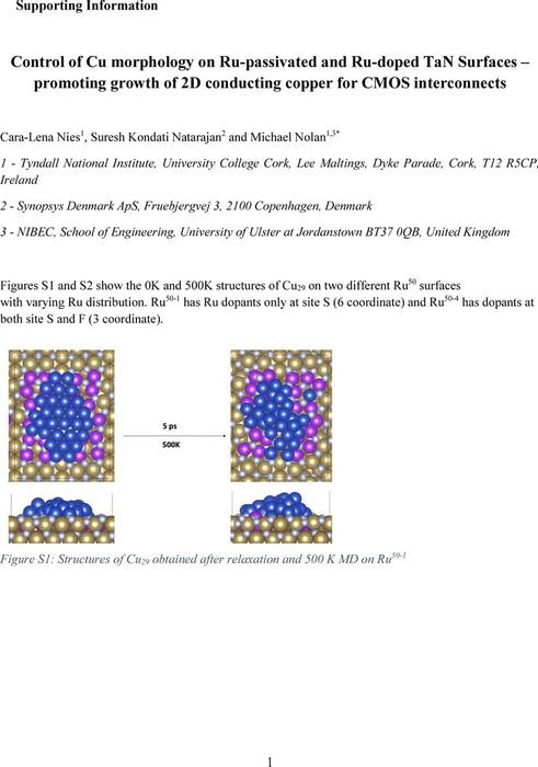 Thumbnail image of Cu RuTaN preprint SI.pdf