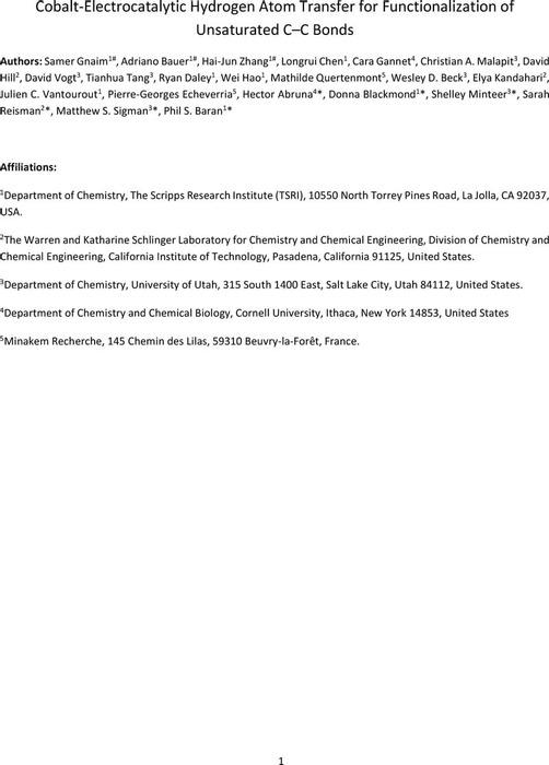 Thumbnail image of SI file.pdf
