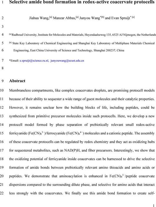Thumbnail image of AmideBondCoacervatesV1.pdf