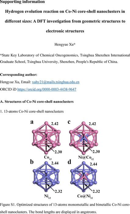 Thumbnail image of SI-additional_data_Co-Ni_20210814.pdf