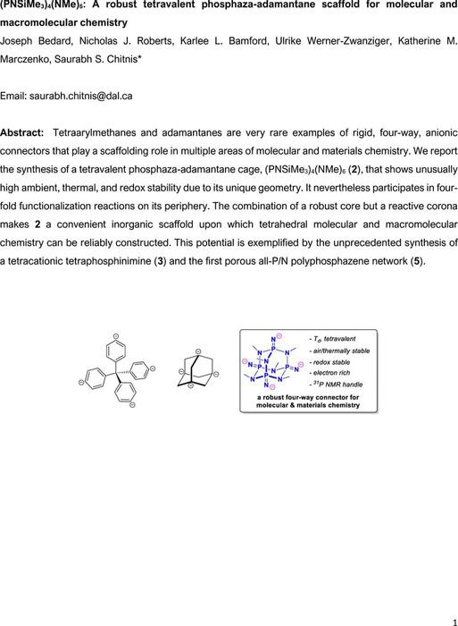 Thumbnail image of p4n10-chemrxiv.pdf