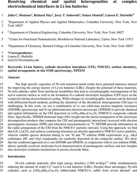 Thumbnail image of CEI_NMC_maintext_vfinal-2.pdf