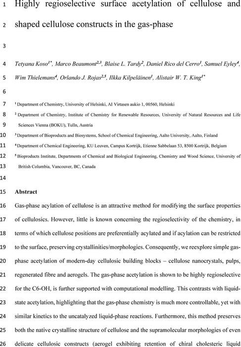 Thumbnail image of Art2-Gas-phaseAcetylation-v5_TK.pdf