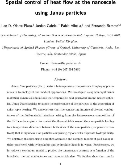 Thumbnail image of Janus_nanoparticles-main-and-si.pdf
