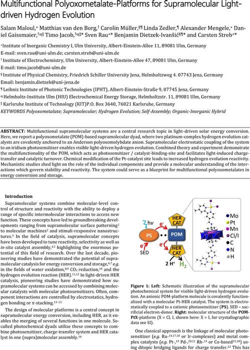 Thumbnail image of ChemRxiv_PtPOM_v1.pdf