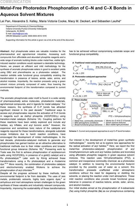 Thumbnail image of Lei  ChemRXiv.pdf