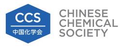 Chinese Chemical Society logo